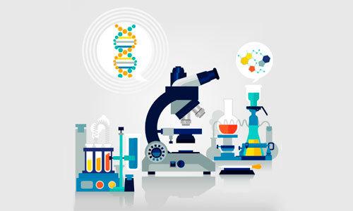 Какие анализы можно сдать бесплатно по полису ОМС: на гормоны, витамины и аллергены