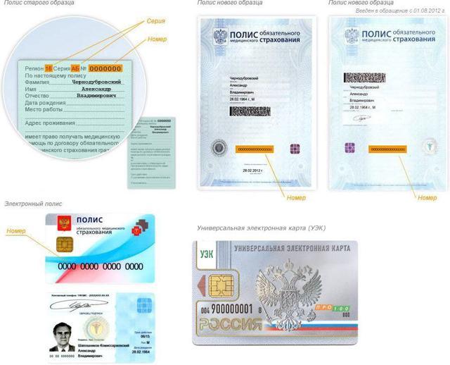 Как проверить какие медицинские услуги были оказаны по полису ОМС