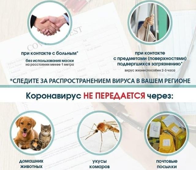 Признаки коронавируса у человека: какие симптомы у людей