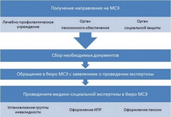 Установление группы инвалидности по нормативно правовым актам: порядок и сроки