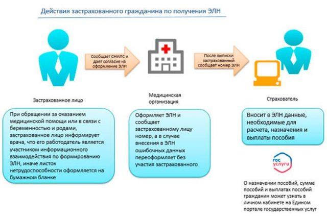Приказ МЗ РФ №624 о порядке выдачи листков нетрудоспособности: кто выдает листки