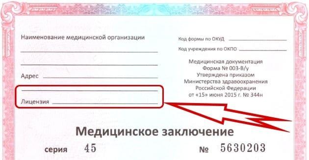 Номер лицензии медицинской справки для получения водительского удостоверения: где посмотреть